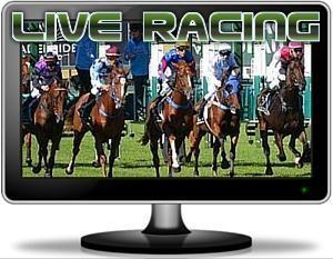 Live Racing Stream